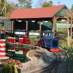 The Light Railway